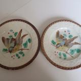 set 2 farfurii majolica cu pitigoi