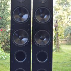 Boxe Dali AXS 8000