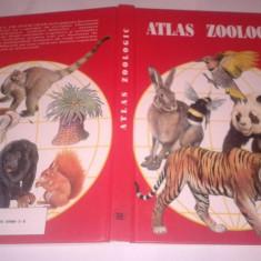 Carte Biologie - ATLAS ZOOLOGIC de anuta ionescu andrei EDITURA VOX ANUL 1996 CARTONAT ilustratii