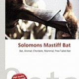 Solomons Mastiff Bat