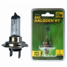 Bec auto cu halogen H7 RoGroup, 12V, 55W, 1 buc