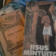 IISUS MINTUITORUL DE PETRE DULFU 1990 256 PAG-AM CARTI AUTOR - Carte de rugaciuni