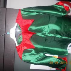 Costum spiridus, Marime: Alta, Culoare: Verde