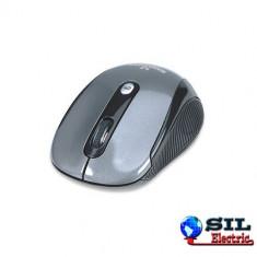 Mouse fara fir 2.4GHz 2000dpi argintiu 177795 Manhattan