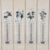 Termometru Cider