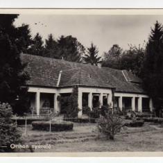 BRATCA BIHOR PENSIUNE, BARATKA NYARALO - Carte Postala Crisana dupa 1918, Necirculata, Fotografie