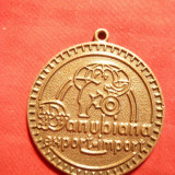 Medalii Romania - Medalie cu toarta Danubiana Export-Import, bronz, d= 3, 5 cm