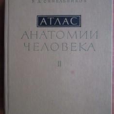 ATLAS ANATOMIE UMANA SINELNIKOV - VOL. II