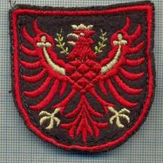 Uniforma militara - 94 -EMBLEMA MANECA - POLITIE? -MILITARA?-GERMANIA?-starea care se vede