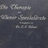 Die Therapie der Wiener Spezialarzte - O. O. Fellner