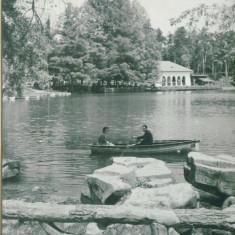 CRAIOVA - Carte Postala Oltenia dupa 1918, Circulata, Fotografie