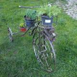Tricicleta decorativa pentru gradina