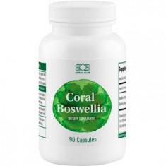 Colier argint - Coral Boswellia (90 capsule)