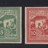 Timbre Romania, An: 1917, Nestampilat - TIMBRU DE AJUTOR 1917 - NEEMISE MOSCOVA - SERIE MNH