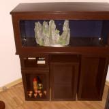Vand acvariu 110 litri cu mobilier si toate accesoriile.