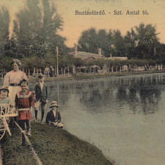 BUZIAS, CIRCULATA JUL.''916 - Carte Postala Banat dupa 1918, Printata