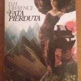 2877 LAWRENCE - FATA PIERDUTA