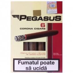 Tigari de foi Pegasus 55-60 grame de tutun, nu este tutun vrac - Tigari foi
