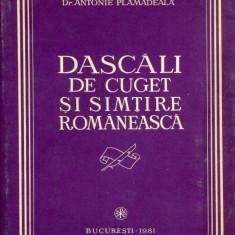 Antonie Plamadeala - Dascali de cuget si simtire romaneasca - 687996 - Carte Sociologie