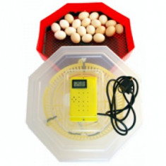 Incubator de oua cleo 5 TH