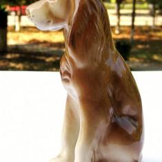 Golden Retriever statueta portelan Bohemia Royal Dux anii 50 - Bibelou vechi